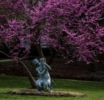 Mermaid and Red Bud Tree